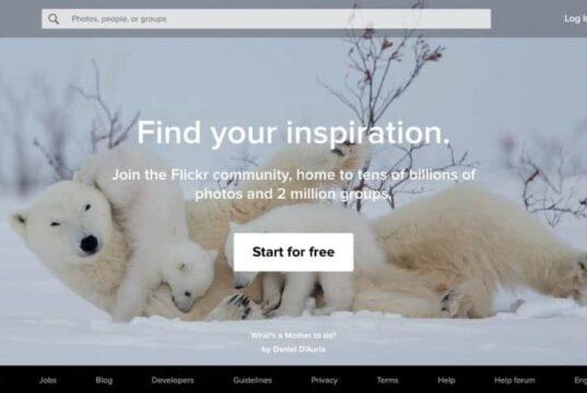 Websites Like Flickr